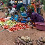 foxglove-project-Grassroots-Rwanda9